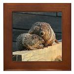 Groundhog Family Framed Tile