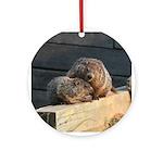Groundhog Family Ornament (Round)
