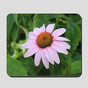 Pretty Pink Flower Mousepad