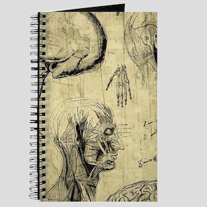 Vintage Anatomy Skulls Journal