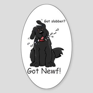 NS - Oval Sticker