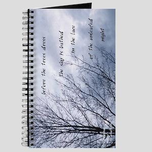 Ameriku Winter Journal