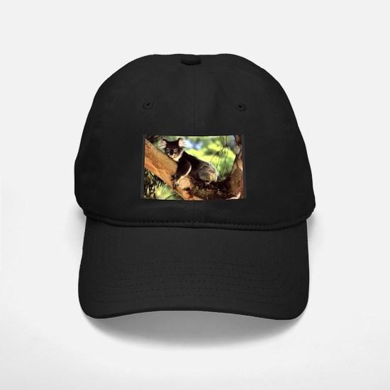Koala Cap