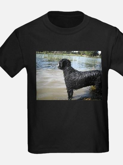 Dias the Portuguese Water Dog T