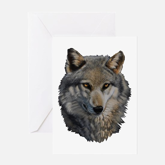 STARE Greeting Cards