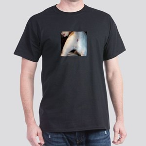 The cat's ass Black T-Shirt