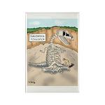 Transcendental Fossiliz Rectangle Magnet (10 pack)