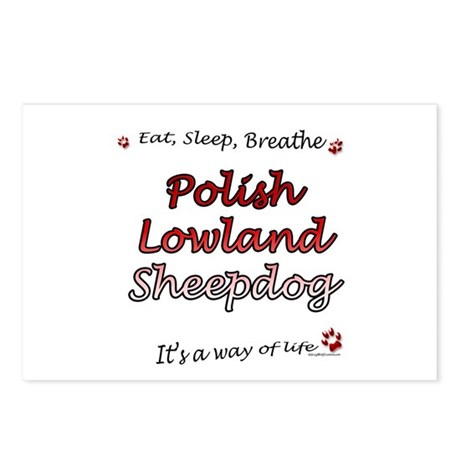 Lowland Breathe Postcards (Package of 8)