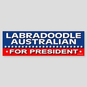 LABRADOODLE AUSTRALIAN Bumper Sticker