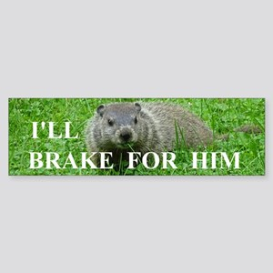 Groundhog Bumper Sticker