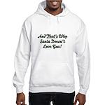 Santa Doesn't Love You Hooded Sweatshirt