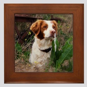 At One With Nature Framed Tile