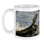 Basking Turtle Mug