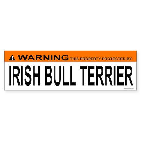 IRISH BULL TERRIER Bumper Sticker