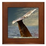 WILD SIDE WHALE Framed Tile
