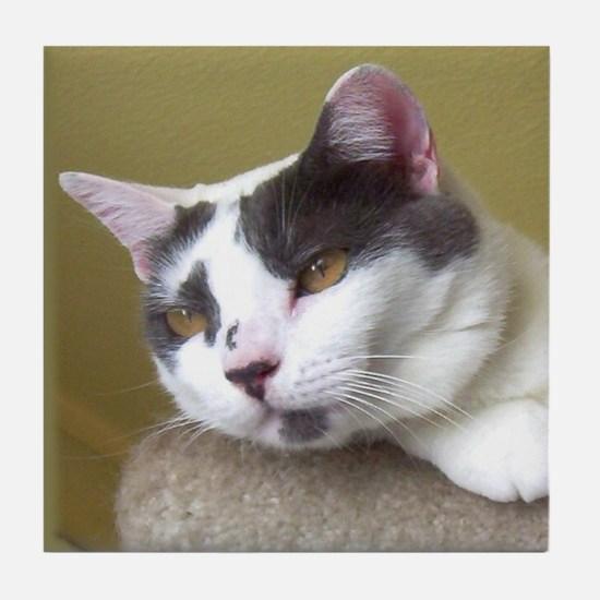Gray & White Cat Tile Coaster