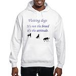Visiting Dogs Hooded Sweatshirt