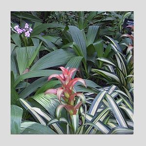 Tropical Garden Tile Coaster