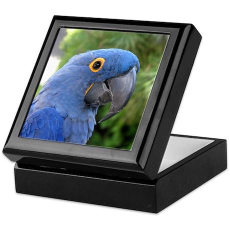 Helaine's Blue Parrot Keepsake Box