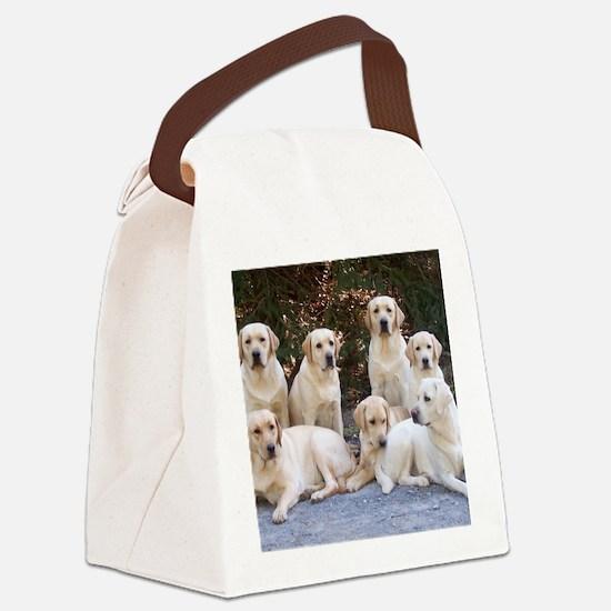 Cute Lab Canvas Lunch Bag
