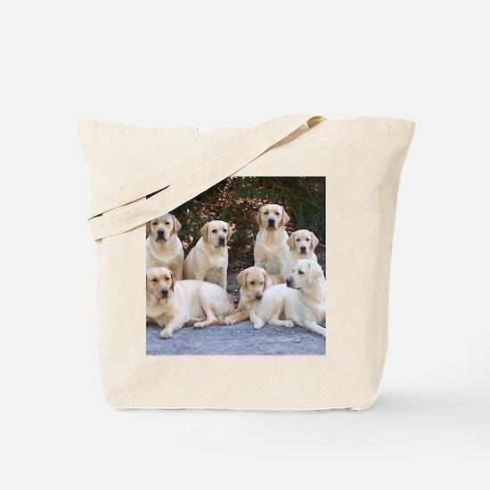 Cute Yellow lab Tote Bag