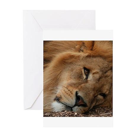 Beautiful Lion Greeting Card