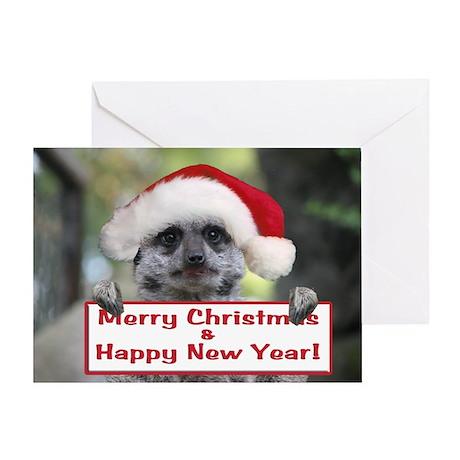 Helaine's Christmas Meerkat Greeting Card