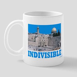Israel Indivisible Mug