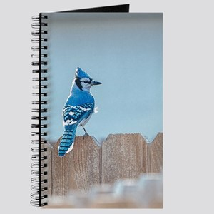 Blue Jay on Wood Fence Journal