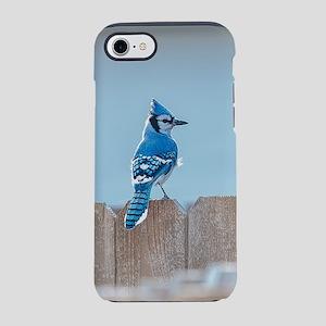 Blue Jay on Wood Fence iPhone 8/7 Tough Case