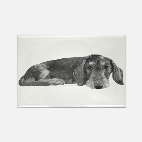 Wire Haired Dachshund Rectangle Magnet