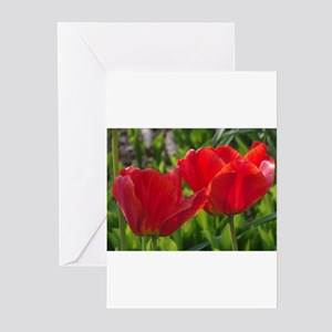 Two crimson tulips Greeting Cards
