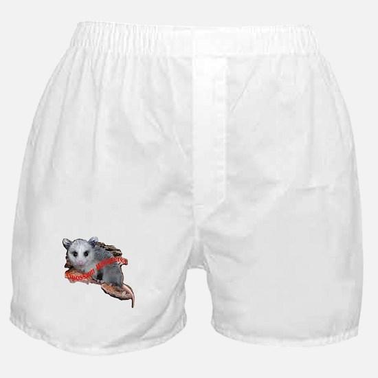 Whisperer Boxer Shorts