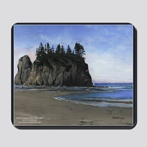 Olympic National Park Scenic Mousepad