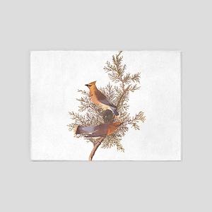 Cedar Waxwing Birds 5'x7'Area Rug