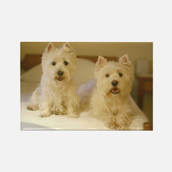 Westie Wing Rectangle Magnet