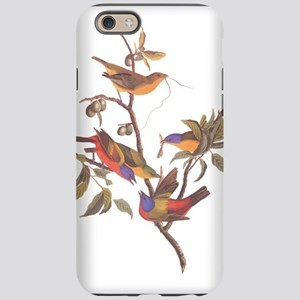 Painted Bunting Birds Vinta iPhone 6/6s Tough Case