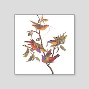 Painted Bunting Birds Vintage Art by John Sticker