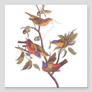 "Painted Bunting Birds Vi Square Car Magnet 3"" x 3"""