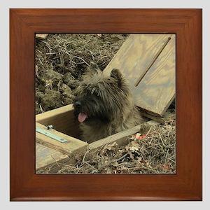 Cairn Terrier Earthdog Framed Tile