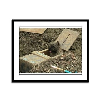 Cairn Terrier Earthdog Framed Panel Print