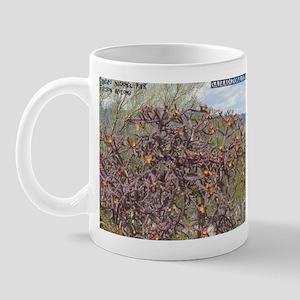 Cholla 1 Mug