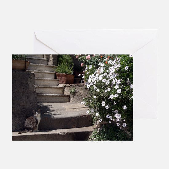 Cat in Garden Card
