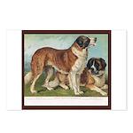 Antique Saint Bernard R Dog Portrait Postcards (8)