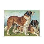 Antique St Bernard Rough Portrait Postcards (8)