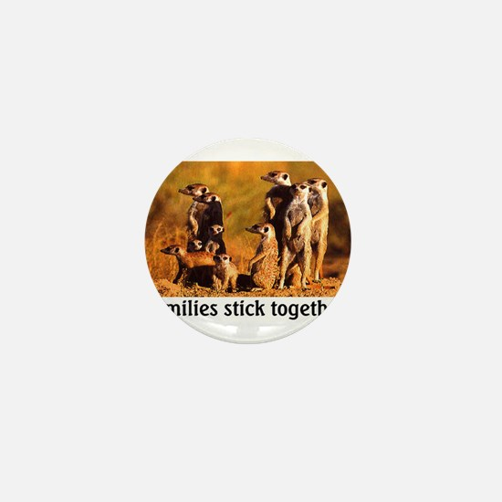 FAMILIES STICK TOGETHER Mini Button