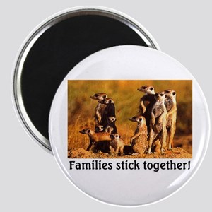 FAMILIES STICK TOGETHER Magnet