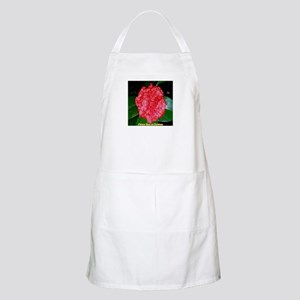 Chinese Rose on Christmas Light Apron