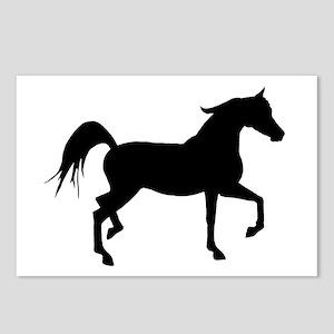Arabian Horse Silhouette Postcards (Package of 8)