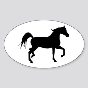Arabian Horse Silhouette Sticker (Oval)
